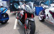 Kawasaki Z1000 Gator Customs (2)