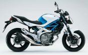 Suzuki Gladius offizieller Preis