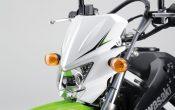 Kawasaki KLX125 2010 (5)