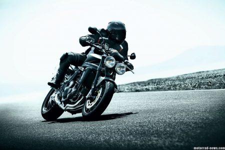 Triumph Speed Striple 2010 (1)