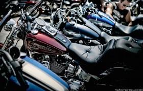 Harley-Davidson Demo Rides und Jubilaeum Potsdam