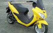 zev-7100-Roller-1