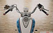 Triumph Thunderbird Hopper-5