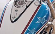 Triumph Thunderbird Hopper-6