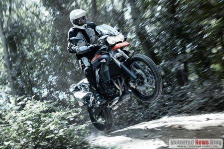 triumph-tiger-800-adventure-2011-6