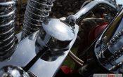 motorvisionen-harley-davidson-softail-don-56
