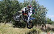Dakar 2011 BMW Team (1)