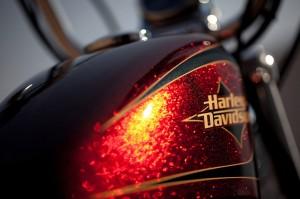 Harley-Davidson Hard Candy Custom Lack 2013-3