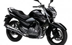 Suzuki 250 Inazuma 2012-2