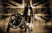 Vilner Custom Bike Bulldog (11)