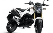 Honda MSX125 2013 (4)