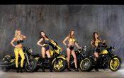 Rockstar Energy Harley-Davidson Girls-1