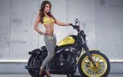 Rockstar Energy Harley-Davidson Girls-2