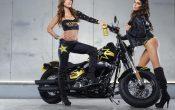 Rockstar Energy Harley-Davidson Girls-3