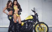 Rockstar Energy Harley-Davidson Girls-4