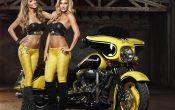 Rockstar Energy Harley-Davidson Girls-5
