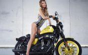 Rockstar Energy Harley-Davidson Girls-7