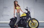 Rockstar Energy Harley-Davidson Girls-8