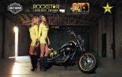 Rockstar Energy Harley-Davidson Girls-a3