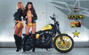 Rockstar Energy Harley-Davidson Girls-a4