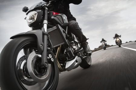 Yamaha MT-07 Action 2014 (2)