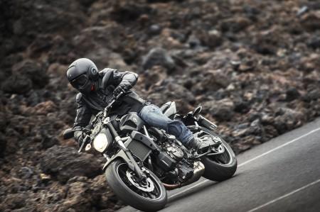 Yamaha MT-07 Action 2014 (3)