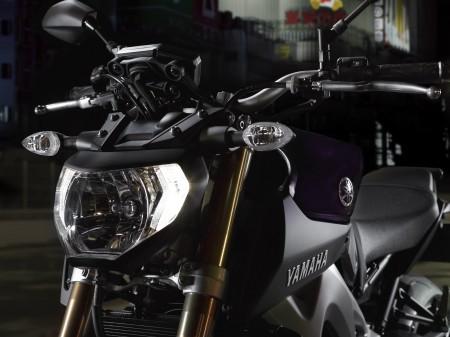Yamaha MT-09 2014 (23)