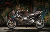 aprilia-stingray-by-vilner-2013-2