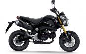Honda MSX125 2013 (1)