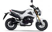 Honda MSX125 2013 (3)