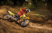 Suzuki RM-Z450 2015 Action (1)