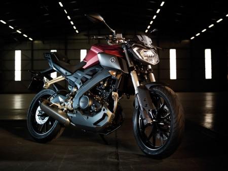 Yamaha MT-125 2014 (1)