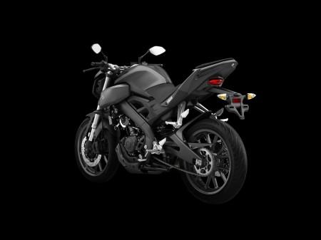 Yamaha MT-125 2014 (8)
