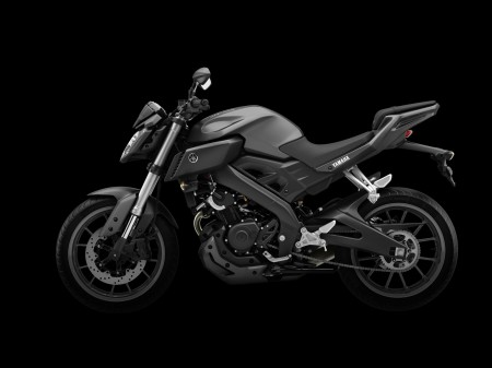 Yamaha MT-125 2014 (9)