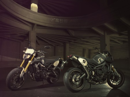 Yamaha MT-09 Street Tracker 2014 (10)