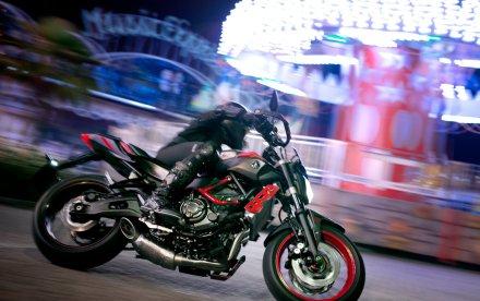 Yamaha MT-07 Moto Cage 2015 (1)