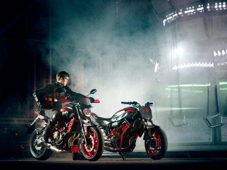 Yamaha MT-07 Moto Cage 2015 (32)