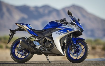 Yamaha YZF-R3 2015 (22)