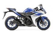 Yamaha YZF-R3 2015 (25)
