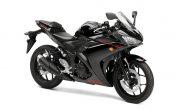 Yamaha YZF-R3 2015 (28)