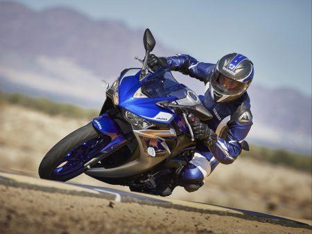 Yamaha YZF-R3 2015 (5)