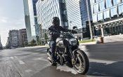 Ducati Diavel Carbon 2016 (14)