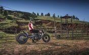 Indian Scout Black Hills Beast Custombike 2015 (38)