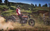 Indian Scout Black Hills Beast Custombike 2015 (41)