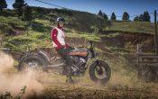 Indian Scout Black Hills Beast Custombike 2015 (42)