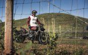 Indian Scout Black Hills Beast Custombike 2015 (47)
