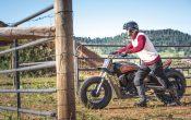 Indian Scout Black Hills Beast Custombike 2015 (55)