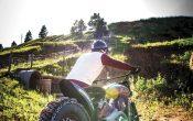 Indian Scout Black Hills Beast Custombike 2015 (56)