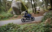 BMW G 310 R 2016 - Action (18)