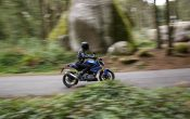 BMW G 310 R 2016 - Action (19)